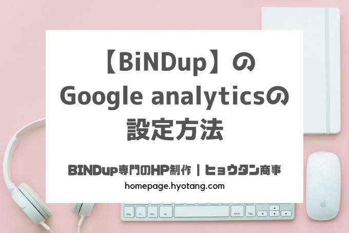 【BiNDup】のGoogle analyticsの設定方法